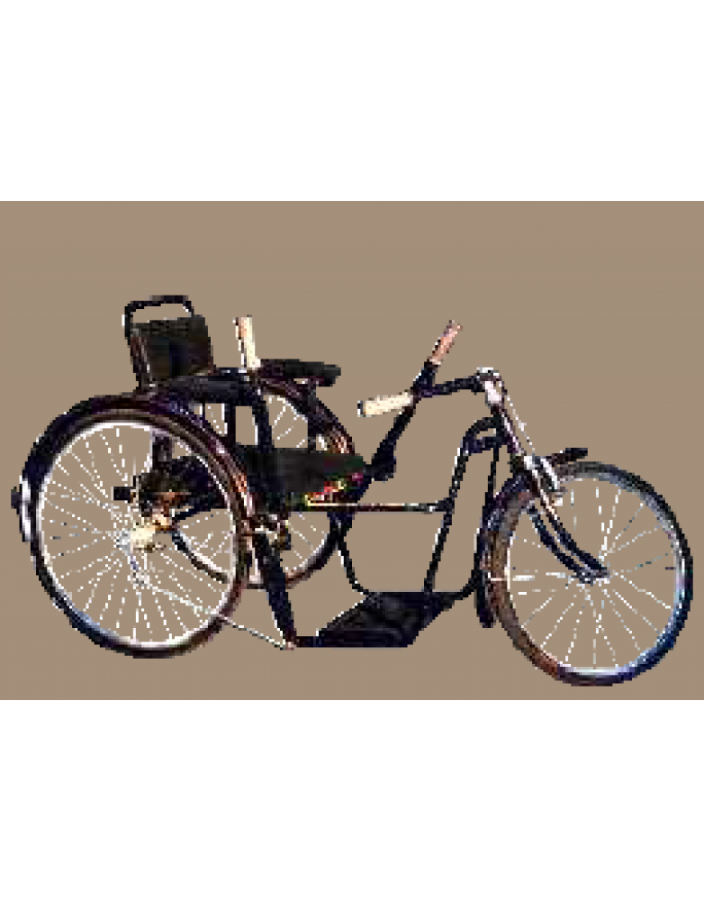 Tricycle Chetak -  TD 2A 60